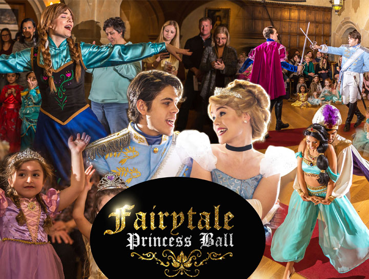 Chicago Princess Ball in Naperville Illinois,princess birthday party