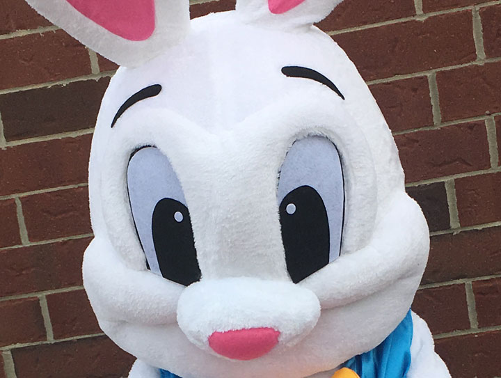 Rent the Easter Bunny for Kids