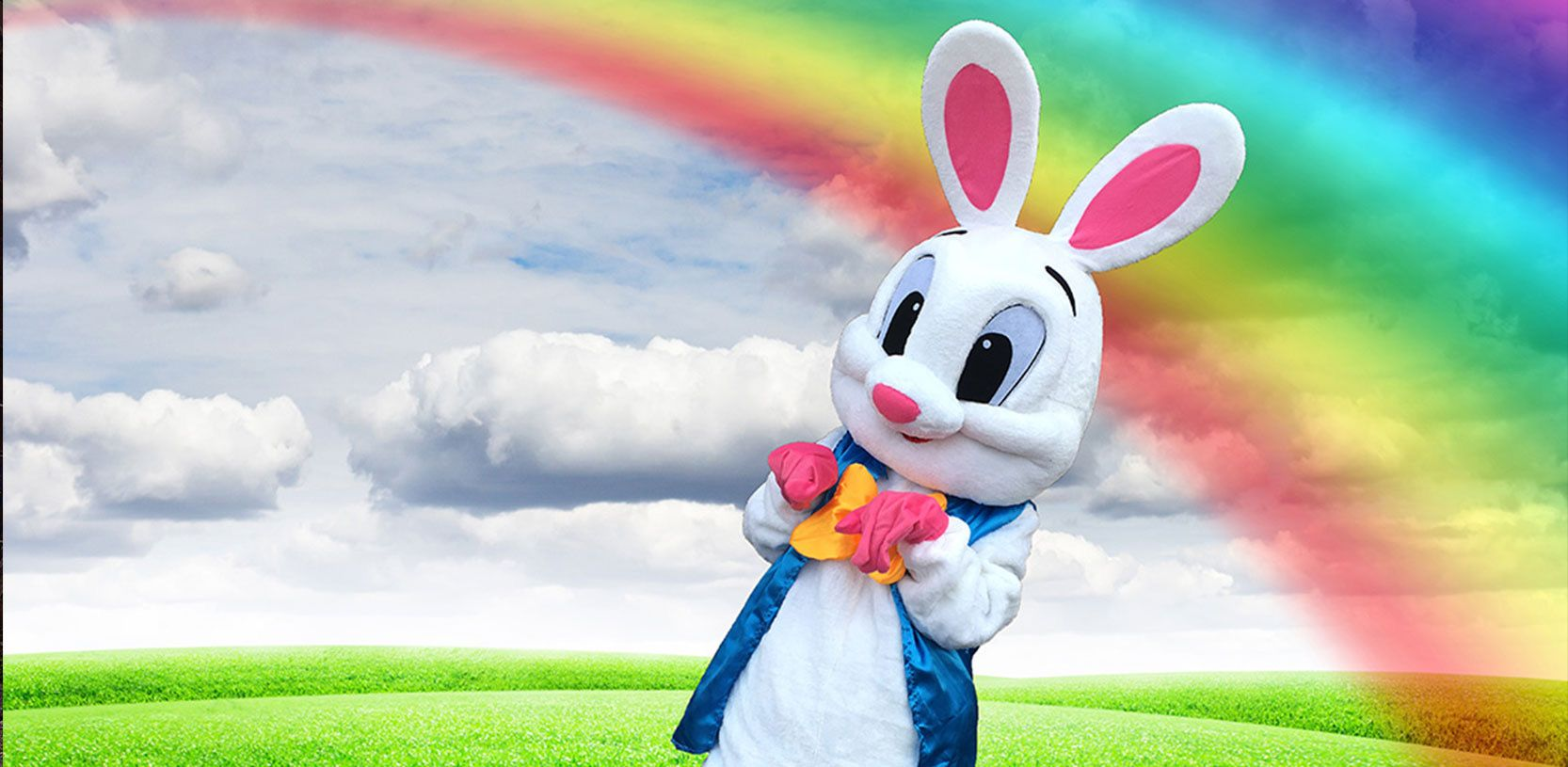 Rent Easter Bunny for Birthday party in Auburn Hills, Naperville